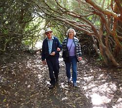 Summer stroll, Sheringham Park