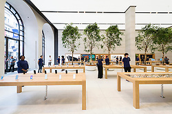 © Licensed to London News Pictures. 13/10/2016. Staff inside the new Apple store in Regent Street is unveiled at a press preview with a new exterior and interior design concept by Foster + Partners.  Regent St was the first Apple store in Europe and has served over 60 million customers over the past 12 years.<br /> London, UK. Photo credit: Ray Tang/LNP