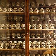 Museo di Anatomia