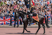 "The Household Cavalry return to Buckinham Palace down the Mall - Trooping the Colour by the Irish Guards on the Queen's Birthday Parade. The Queen's Colour is ""Trooped"" in front of Her Majesty The Queen and all the Royal Colonels.  His Royal Highness The Duke of Cambridge takes the Colonel's Review for the first time on Horse Guards Parade riding his horse Wellesley. The Irish Guards are led out by their famous wolfhound mascot Domhnall and more than one thousand Household Division soldiers perform their ceremonial duty. The Soldiers will parade in the traditional ceremonial uniforms of the Household Cavalry, Royal Horse Artillery, and Foot Guards. They are accompanied by the Household Division Bands & Corps of Drums. London 17th June 2017."