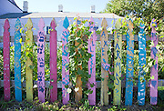 a colorful fence filled with happiness and joy in Faubourg Marigny