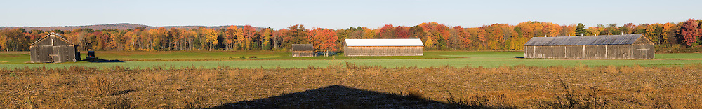 Tobacco barns on a farm in Whatley, Massachusetts.