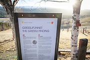 Græslifunnet var et myntfunn, fra 1878 i Græsli i Tydal kommune i Sør-Trøndelag. 2 253 sølvmynter, noen sølvbiter og en fuglefigur i forgylt sølv ble gravd frem i potetåkeren til bonde Arnt Kristoffersen på Utstuggu eller Jo-Nils-gården. Funnet var, det største enkeltfunn av mynter som er gjort i Norge fra middelalderen, og det er reist en minnestein på funnstedet. De fleste myntene var norske, fra kong Harald Hardrådes tid. De yngste myntene var fra 1070-årene. Myntkabinettet ved Oldsakssamlinga i Oslo overtok alle myntene fra funnet.