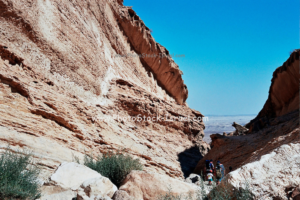 Israel, Negev desert, people hiking in the arid rock formations landscape