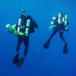 RSMAS Dive Office