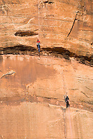 Climbers scaling a big wall in Zion Canyon, Zion National Park Utah USA
