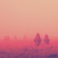 Kaziranga Through Rose Tinted Glasses