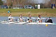 WJ14 4x+<br /> <br /> Junior Sculling Head 2019<br /> <br /> To purchase this photo, or to see pricing information for Prints and Downloads, click the blue 'Add to Cart' button at the top-right of the page.