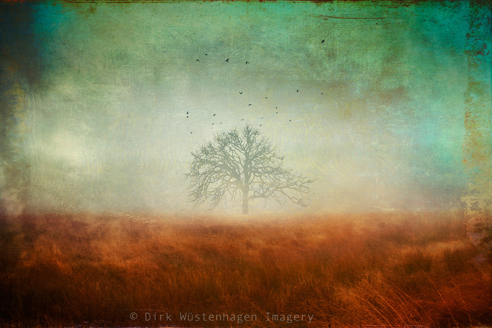 Lone tree in the moor. Texturized and manipulated photograph.<br />