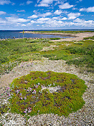 Artillery Lake, Northwest Territories
