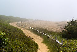 The Cliffs in Montauk, NY