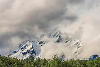 Chilkat River between Klukwan and Haines, Alaska USA.