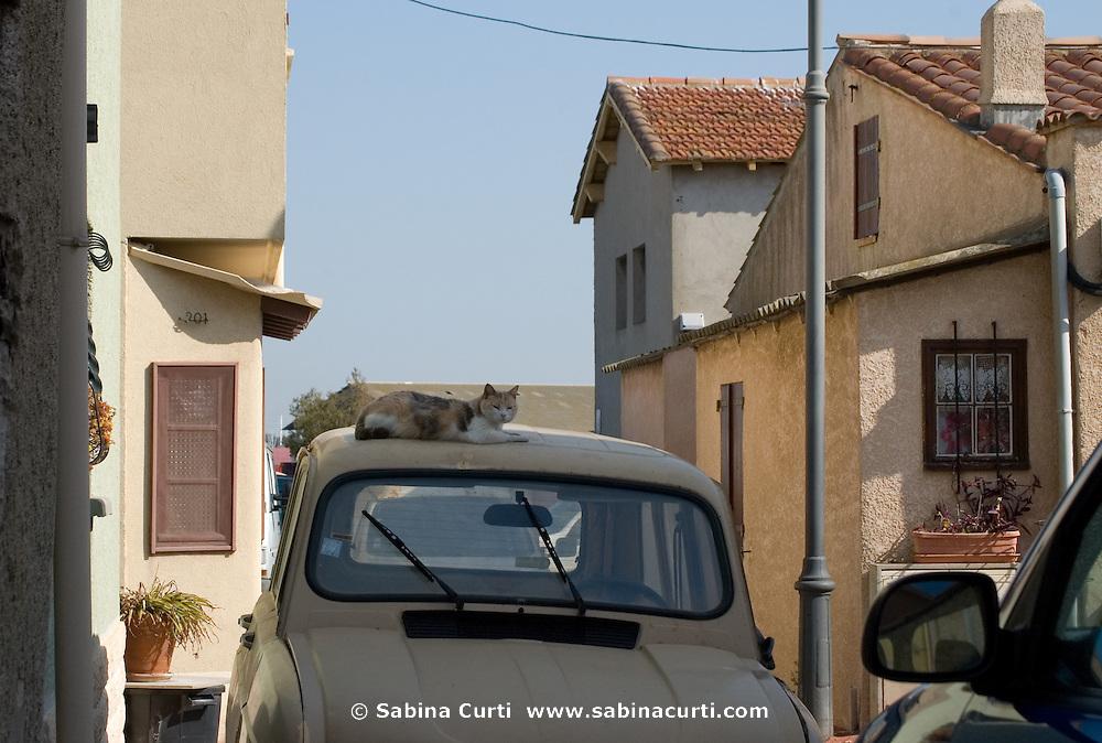 Pointe Courte, Sète, France