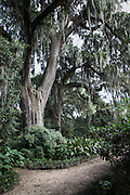 The garden paths at Parlange Plantation in New Roads, Louisiana