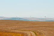 Wind turbines at Madison Farms in Echo, Oregon