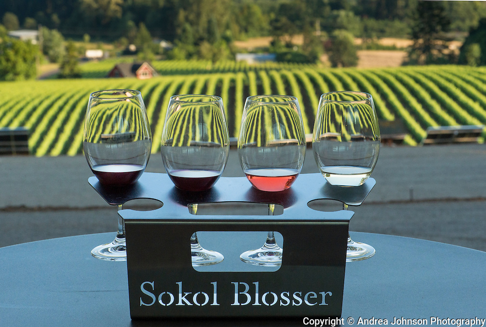 Sokol Blosser tasting flight on patio overlooking vineyard, Dundee Hills, Willamette Valley, Oregon