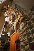 Mannheim. Feature zum Thema Tanzen. Tanzschuhe, Ballettschläppchen, Tanzkleider.<br /> -Swing Schwetzingerstr.<br /> <br /> <br /> Bild: Markus Proßwitz<br /> <br /> ++++ Archivbilder und weitere Motive finden Sie auch in unserem OnlineArchiv. www.masterpress.org ++++
