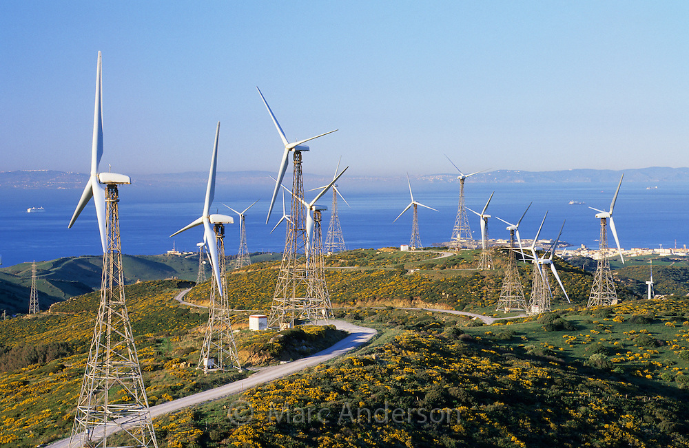Windmills in a wind farm, Tarifa, Spain