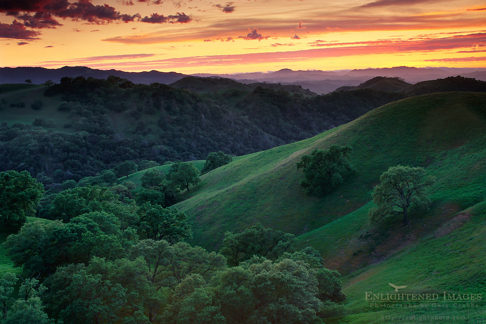 Sunset over oak covered hills, Mt. Diablo State Park, Contra Costa County, CALIFORNIANIA