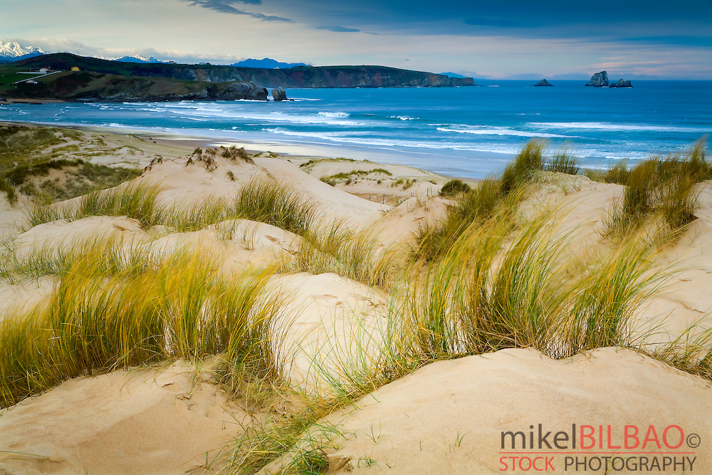Dunes and seashore. Dunas de Liencres Natural Park. <br />