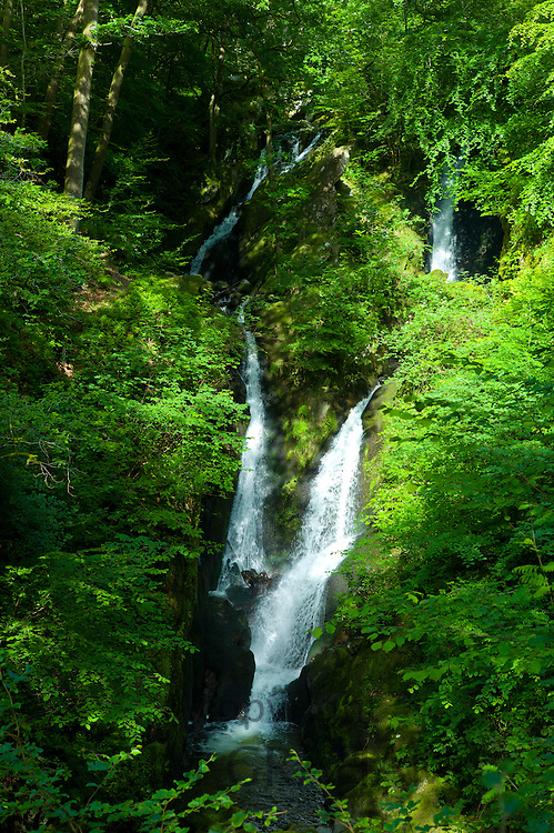 Stockghyll Falls in Stock Ghyll Woods, Ambleside in the Lake District, Cumbria, UK