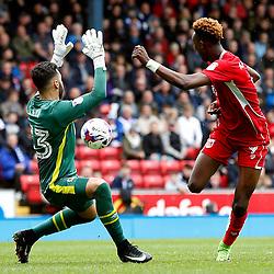 Blackburn Rovers v Bristol City
