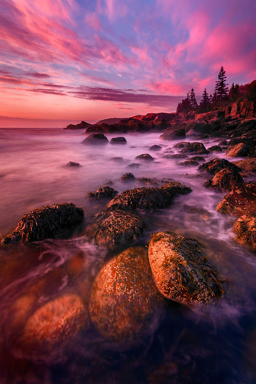 Low tide, Acadia National Park, Maine, USA.