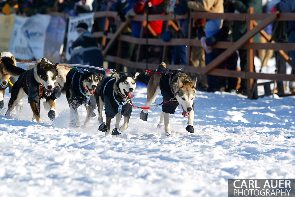 3/4/2007:  Willow, Alaska -  The lead dogs of Veteran Jacques Philip of Nenana, AK moves out in the start of the 35th Iditarod Sled Dog Race