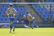 GOAL Stefan Payne scores for Shrewsbury 1-0 during the EFL Sky Bet League 1 match between Shrewsbury Town and Rochdale at Greenhous Meadow, Shrewsbury, England on 8 April 2017. Photo by Daniel Youngs.