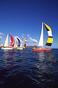 Sailboats, Waikiki, Diamond Head, Oahu<br />