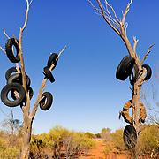 Campsite near Kings Canyon National Park, Northern Territory, Australia, Oceania