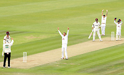 The Umpire give Somerset's Marcus Trescothick out for LBW to the bowling of Hampshire's Danny Briggs - Photo mandatory by-line: Robbie Stephenson/JMP - Mobile: 07966 386802 - 23/06/2015 - SPORT - Cricket - Southampton - The Ageas Bowl - Hampshire v Somerset - County Championship Division One