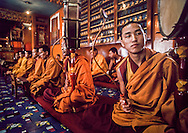 DHARAMSALA, INDIA - Monks play traditional music at the Namgyal Monastery, in Dharamsala, India. The focus of cultural life in Dharamsala is the Namgyal Monastery, the tantric college which performs rituals with and for His Holiness the Dalai Lama. The Namgyal Monastery was founded by the Third Dalai Lama in the late sixteenth century. Since then, the monastery has exclusively served the Dalai Lamas. A distinctive feature of this monastery is its diversity of practice: prayers and rituals of all the major schools of Tibetan Buddhism are performed by Namgyal monks. The monastery is now situated next to the Tsuglag Khang, or the Central Cathedral, across from the Dalai Lama's residence. Young monks can often be seen studying, and practicing debate in the courtyard leading to His Holiness' residence. At present, the monastery has more than 180 monks, of which the younger monks study the major texts of Buddhist Sutra and Tantra. (Photo © Jock Fistick)
