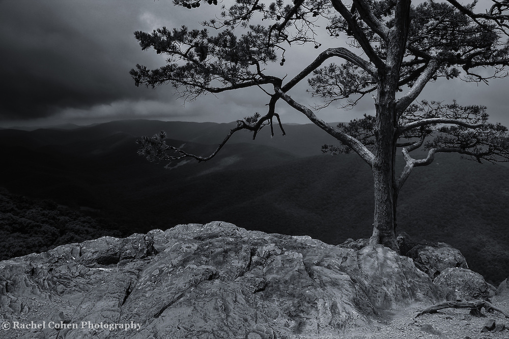 &quot;Darkness upon Ravens Roost&quot;<br />