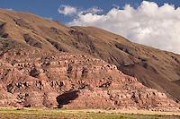 VALLES CALCHAQUIES, CULTIVOS EN LOS ALREDEDORES DE LA POMA, PROV. DE SALTA, ARGENTINA