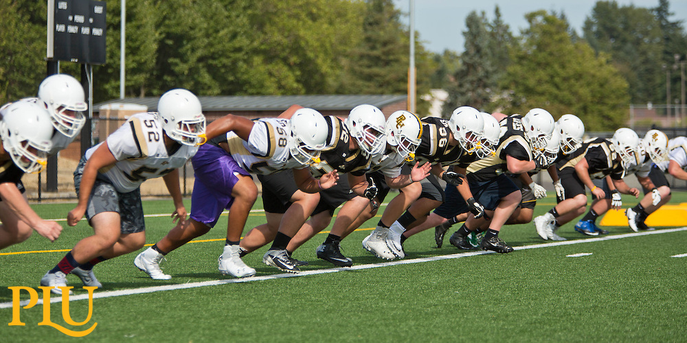 Start of football practice at PLU on Thursday, Aug. 27, 2015. (Photo: John Froschauer/PLU)
