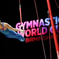 2019 Gymnastics