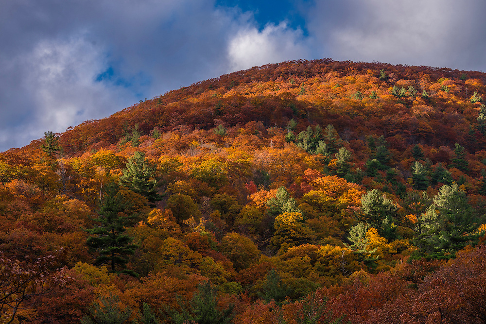 Hill sides fall colors Kaaterskill gorge,