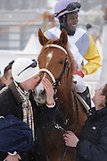 Trainer Philipp Schärer kisses the racehorse African Art ridden by Eduardo Perdoza, after winning the Grand Prix Sport Mind race at White Turf 2011, St Mortiz, Switzerland
