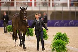 Vilhelmson Silfven Tinne (SWE) - Don Auriello <br /> Reem Acra FEI World Cup Goteborg 2013<br /> © Dirk Caremans