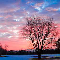 A mid winter red white and blue sunrise in Minnesota.