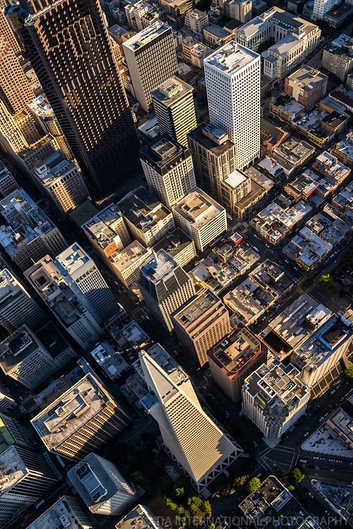 Transamerica Pyramid & Financial District