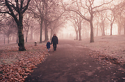 Autumn scene with parent and young child walking through fallen leaves in park,