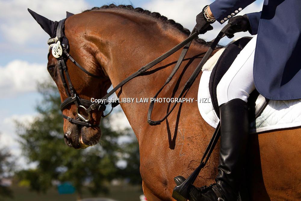 NZL-Monica Oakley (FONTAIN) Kihikihi International Horse Trial: Friday Dressage-CIC3*: INTERIM-1ST
