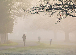© Licensed to London News Pictures. 06/02/2020. London, UK. A walker enjoys the dense fog in Richmond Park this morning as weather experts predict high winds and heavy rain for the weekend. Photo credit: Alex Lentati/LNP