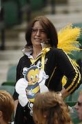 Twickenham, Great Britain. Wasps fans, during the 2007 Heineken Cup Final, between Leicester Tigers and London Wasps. RFU Stadium, London,  Sun 20.05.2007. [Credit: Peter Spurrier/Intersport Images]   [Mandatory Credit, Peter Spurier/ Intersport Images].