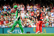 17th February 2019, Marvel Stadium, Melbourne, Australia; Australian Big Bash Cricket League Final, Melbourne Renegades versus Melbourne Stars; Cameron White and Dan Christian of the Melbourne Renegades celebrate their win