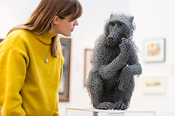 "© Licensed to London News Pictures. 21/01/2020. LONDON, UK. A staff member views ""Juvenile Baboon"", 2019, by Kendra Haste. Preview of London Art Fair at the Business Design Centre in Islington.  Over 100 galleries are offering works, including museum-quality modern and contemporary art from internationally renowned artists and emerging artist, to collectors in a show which runs 22-26 January 2020.  Photo credit: Stephen Chung/LNP"