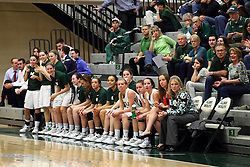 20 February 2016:  Titan Bench during an NCAA women's basketball game between the Elmhurst Bluejays and the Illinois Wesleyan Titans in Shirk Center, Bloomington IL