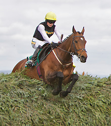 LIVERPOOL, ENGLAND, Thursday, April 7, 2011: 16-year-old jockey Willie Twiston-Davies riding Baby Run jumps the Chair in the lead on his way to winning the John Smith's Fox Hunters' Steeple Chase during Liverpool Day on Day One of the Aintree Grand National Festival at Aintree Racecourse. (Photo by David Tickle/Propaganda)